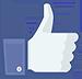 Hoe maak je een evenement aan op de Facebook-pagina van het restaurant icon like