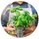 Iens - TheFork - restaurantmanagement Tips om een goede sfeer in uw restaurant te hebben