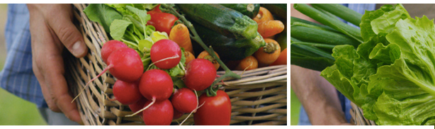 mand met fruit en groente. winstmarge van het restaurant